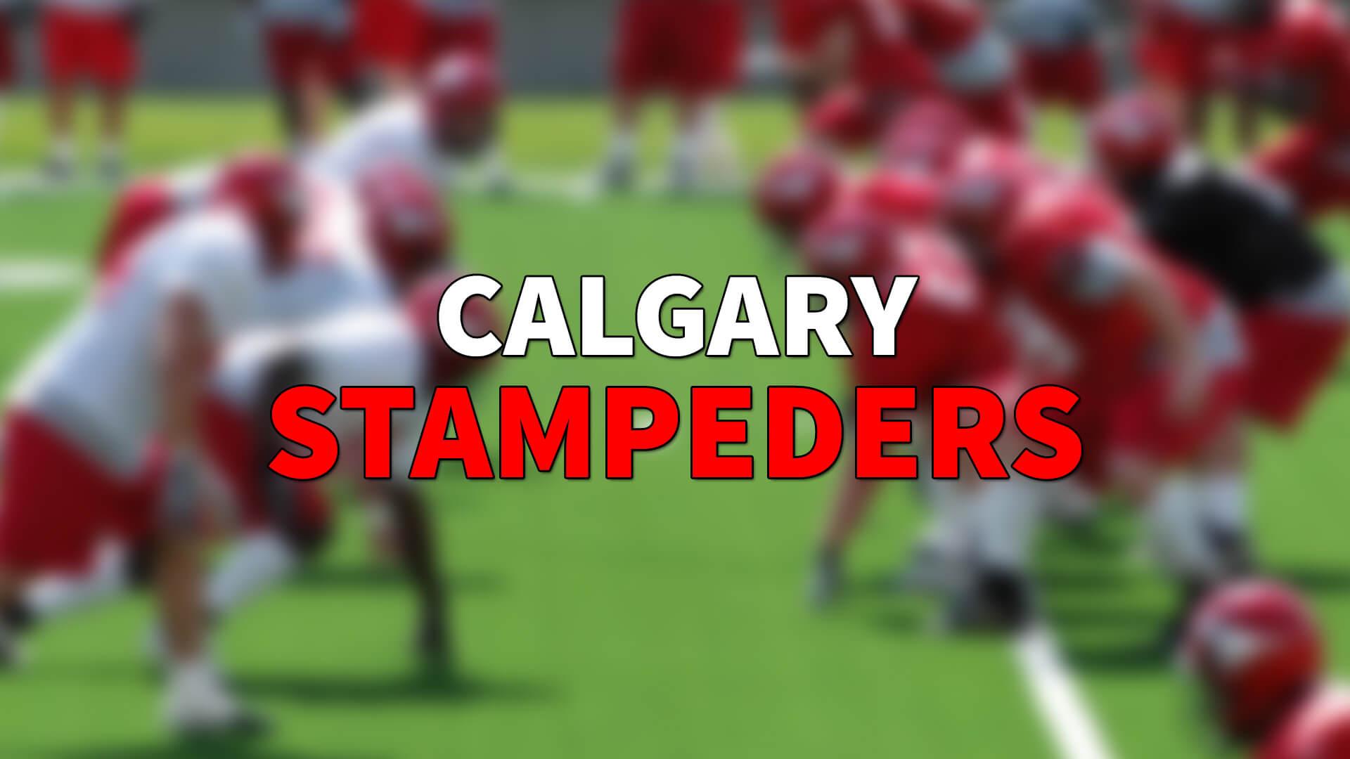 WR Ryan Grant Calgary Stampeders'a Katıldı | Korumalı Futbol Türkiye